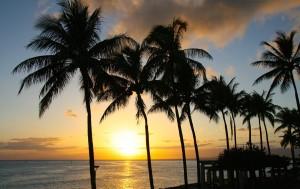 Insel mit Palmen und Sonnenuntergang